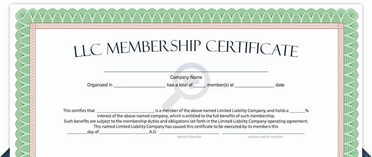 Llc Membership Certificate Template Best Of Llc Membership Certificate Free Limited Liability