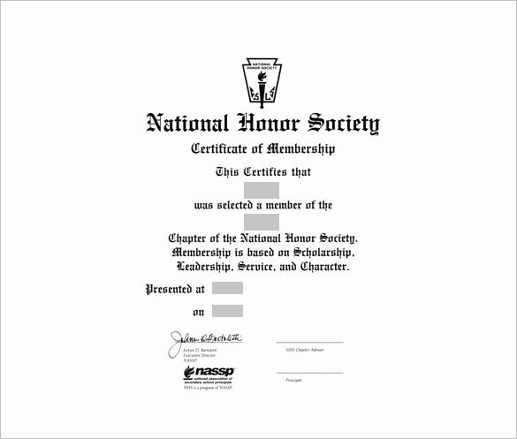 Llc Membership Certificate Template New 23 Membership Certificate Templates Word Psd In