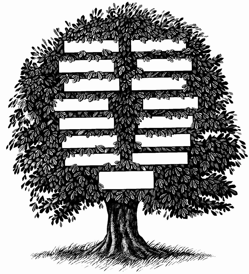 Make Your Own Family Tree Beautiful Backyard Landscape Genealogy Tree Genealogy Reasons to