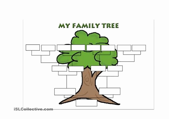 Make Your Own Family Tree Beautiful Create Your Own Family Tree