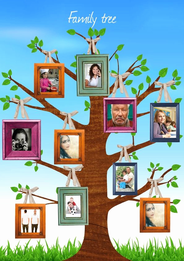Make Your Own Family Tree Luxury 17 Best Images About Magazine Design Inspiration On