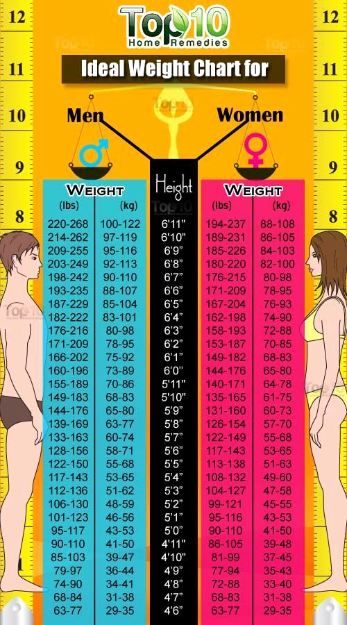 Male Height and Weight Chart Lovely Height and Weight Chart for Women and Men Bmi Calculator