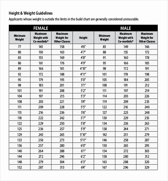 Male Height and Weight Chart Luxury Height Weight Chart Templates – 12 Free Excel Pdf