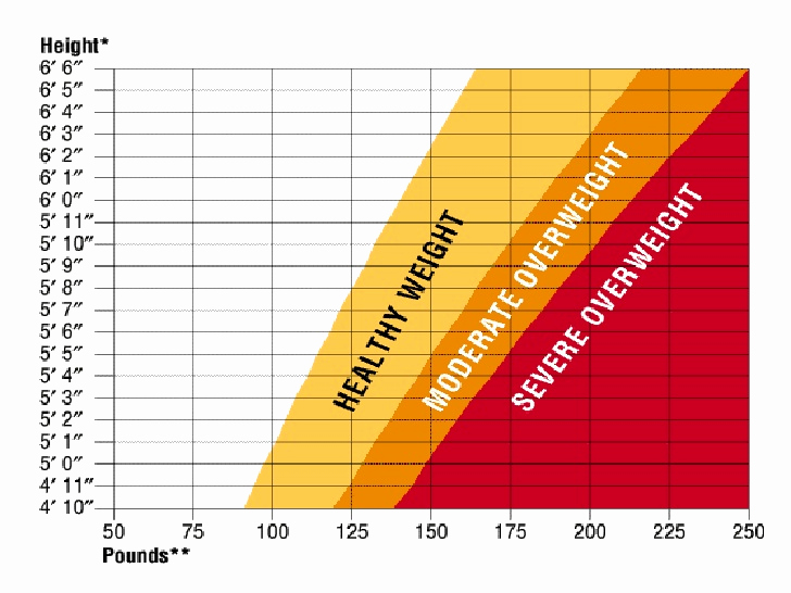 Male Height and Weight Chart Unique Average Men Weight Chart