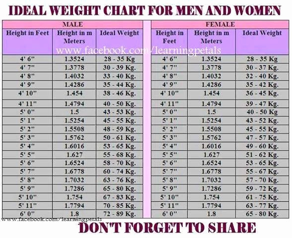 Male Height and Weight Chart Unique Ideal Weight Chart for Men and Women there are Times In