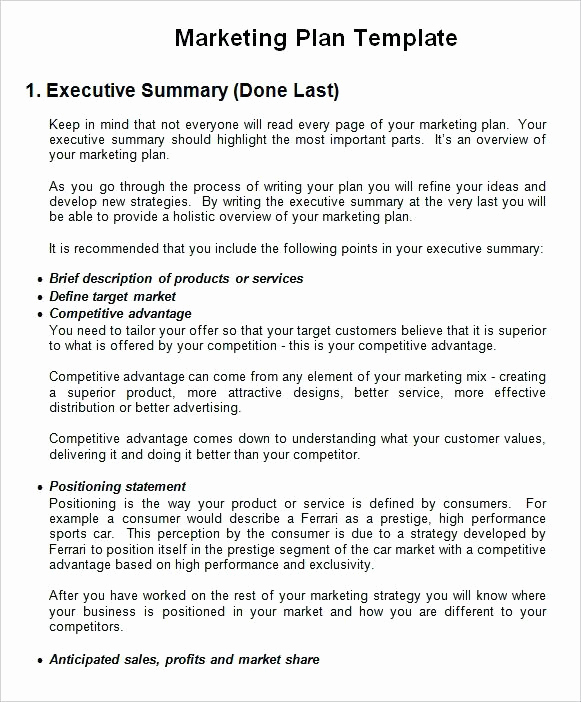 Marketing Plan Executive Summary Beautiful 11 Business Marketing Plan Examples Pdf Word