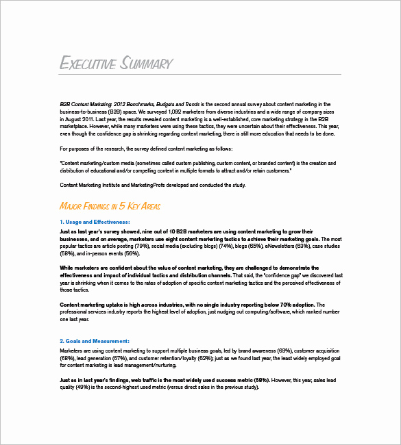 Marketing Plan Executive Summary Best Of 9 Marketing Plan Executive Summary Templates Doc Pdf