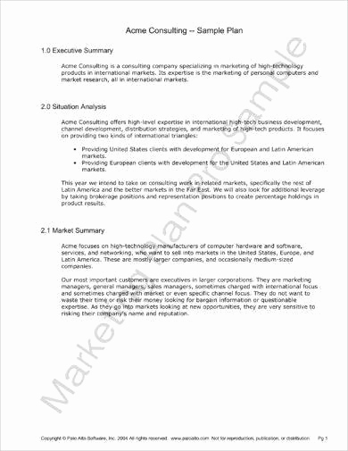 Marketing Plan Executive Summary Elegant 10 Marketing Plan Executive Summary Examples Pdf