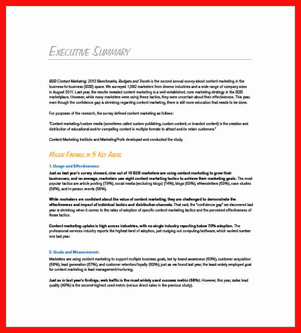 Marketing Plan Executive Summary Lovely Executive Summary Example