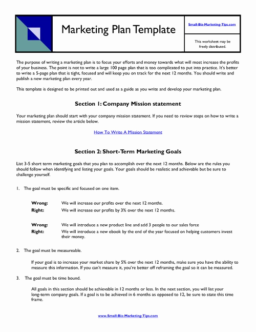 Marketing Plan Template Pdf Awesome 11 Business Marketing Plan Examples Pdf Word