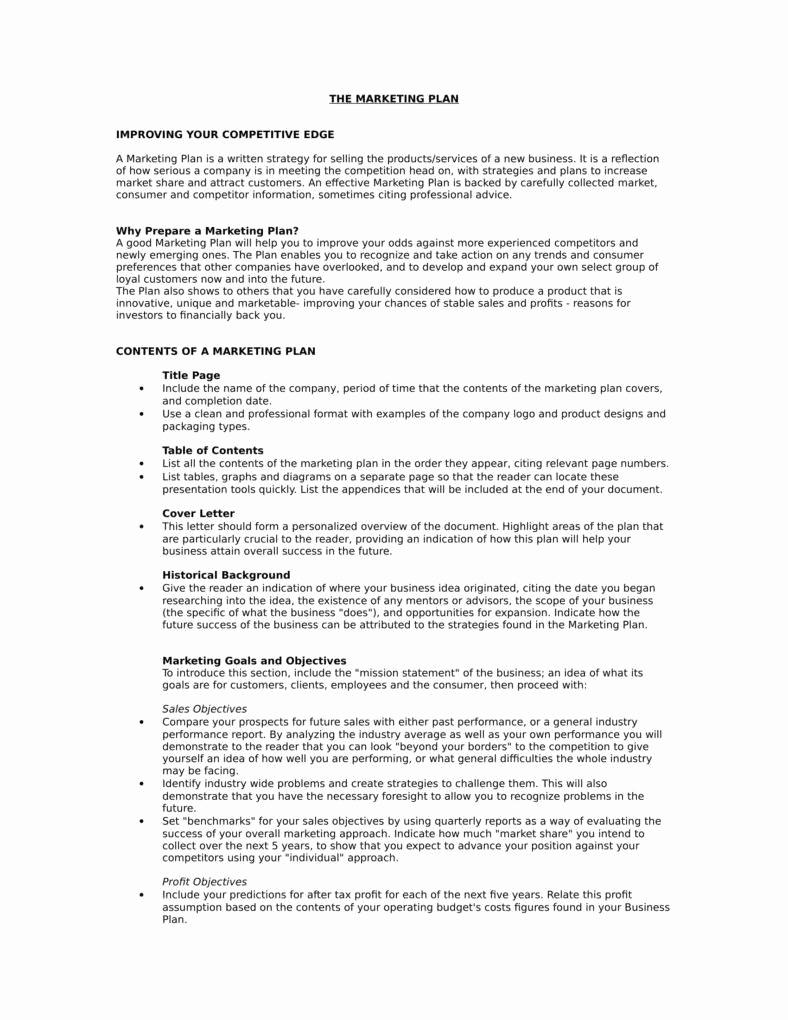 Marketing Plan Template Word Luxury 5 Professional Marketing Plan Templates