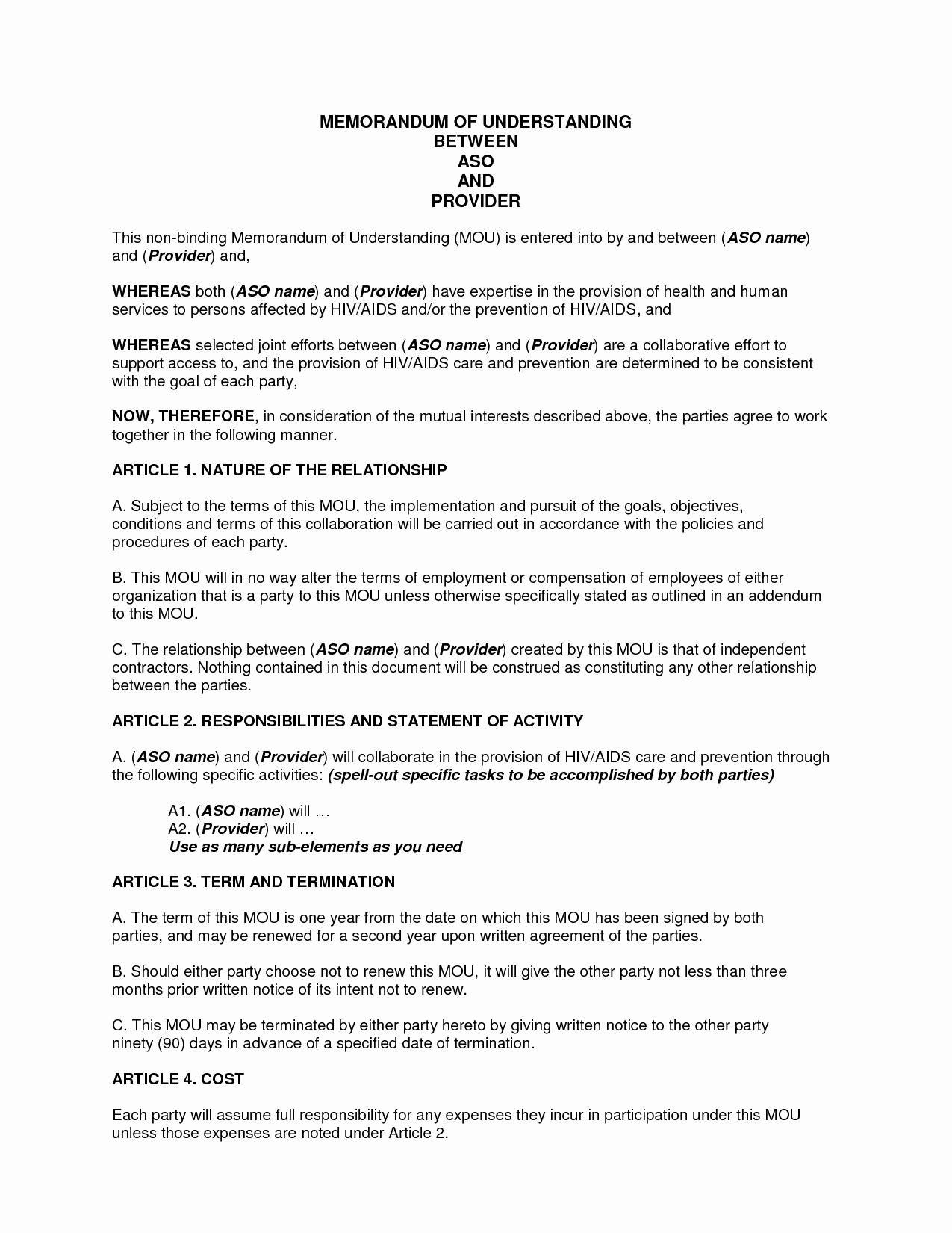 Memo Of Understanding Examples Lovely Sample Memorandum Of Understanding Business Partnership