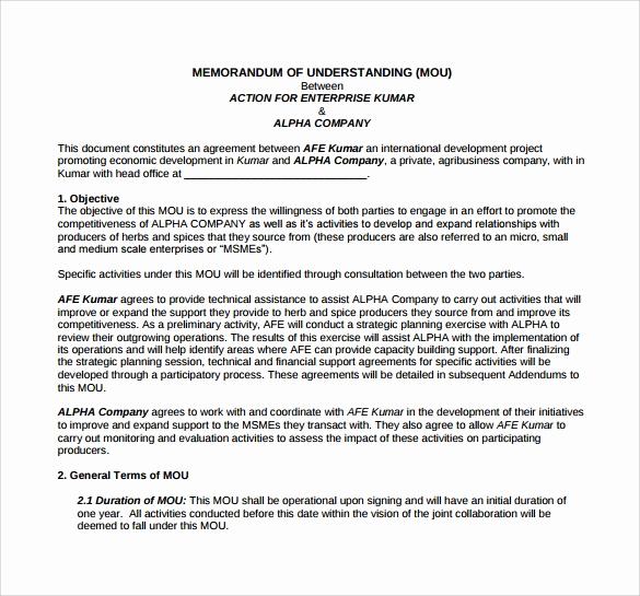 Memorandum Of Understanding Sample Awesome Memorandum Of Understanding Template 21 Download