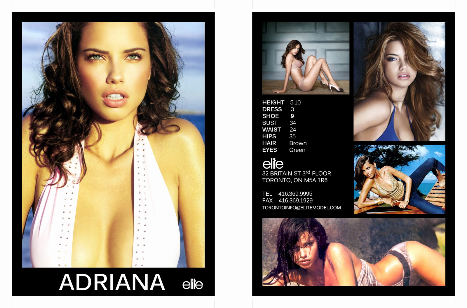 Model Comp Card Template New Hit and Miss Fashion Model P Card