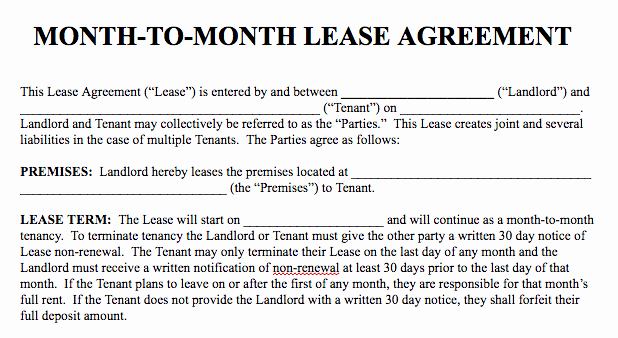 Month to Month Lease Template Beautiful Basic Rental Agreement In A Word Document for Free