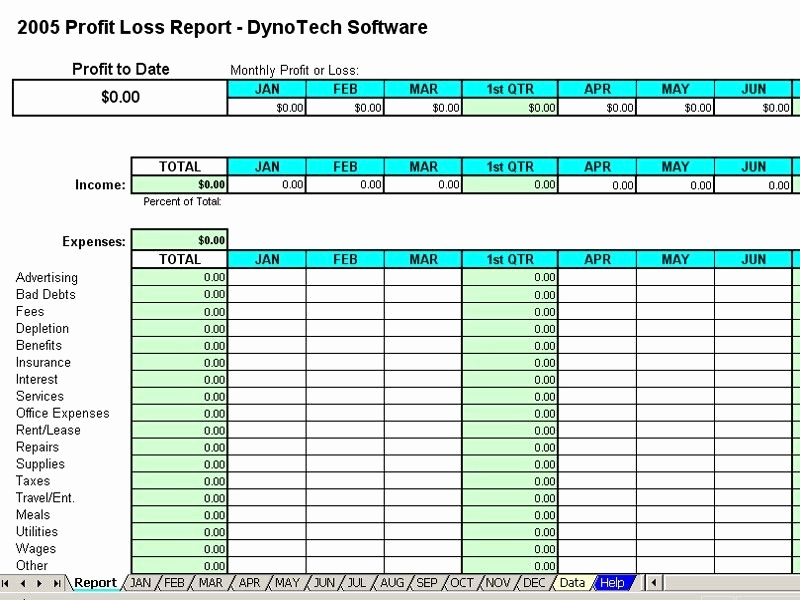 Monthly Profit and Loss Template Best Of Monthly Expense Report Template