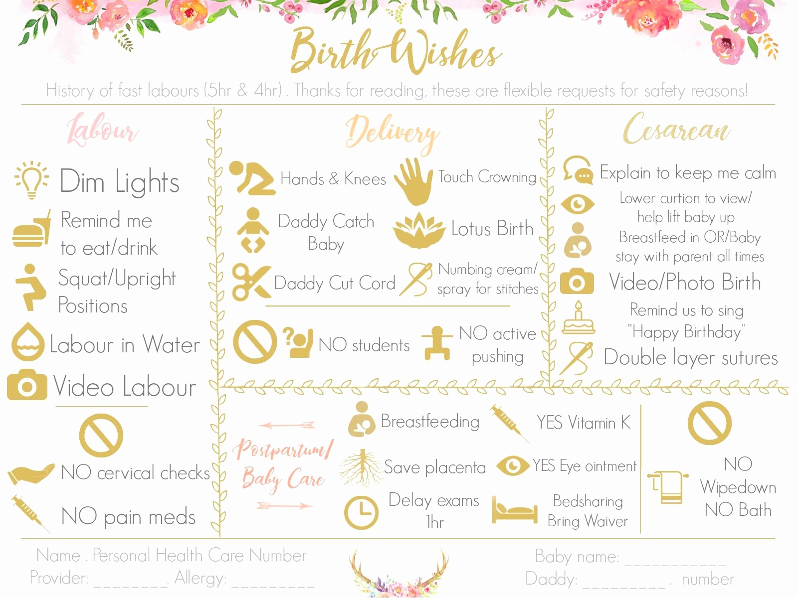 Natural Birth Plan Template Inspirational Make A Visual Birth Plan Easy to Read and Fun to Look at
