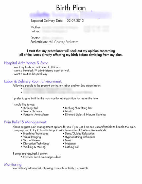 Natural Birth Plan Template Inspirational Our Birth Plan Birth Plan Templates Examples