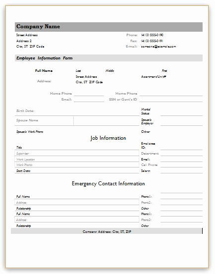 New Hire forms Template Awesome Employee Information forms