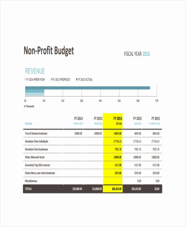 Non Profit Budget Template Unique 6 Nonprofit Bud Templates Pdf