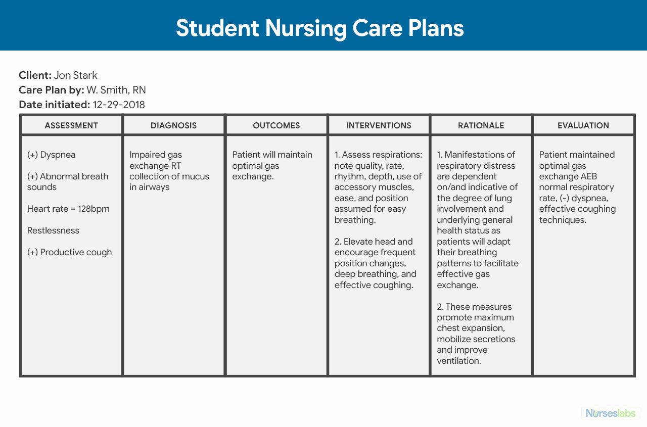 Nursing Care Plans Template Best Of Nursing Care Plan Ncp Ultimate Guide and Database
