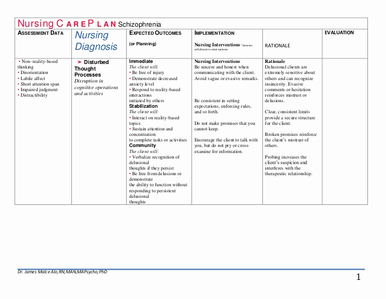 Nursing Care Plans Template Elegant Nursing C A R E P L A N Schizophrenia Drjma