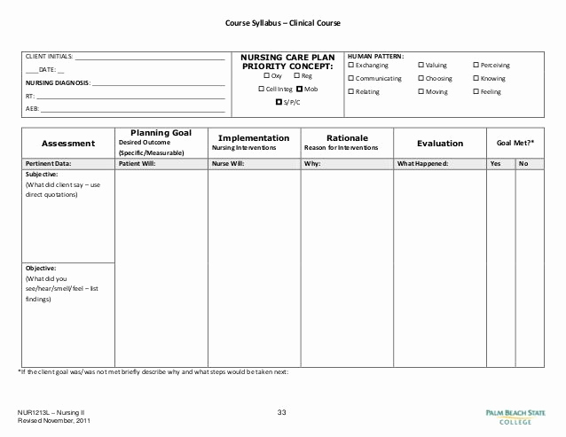 Nursing Care Plans Template Lovely Blank Nursing Care Plan Templates Google Search