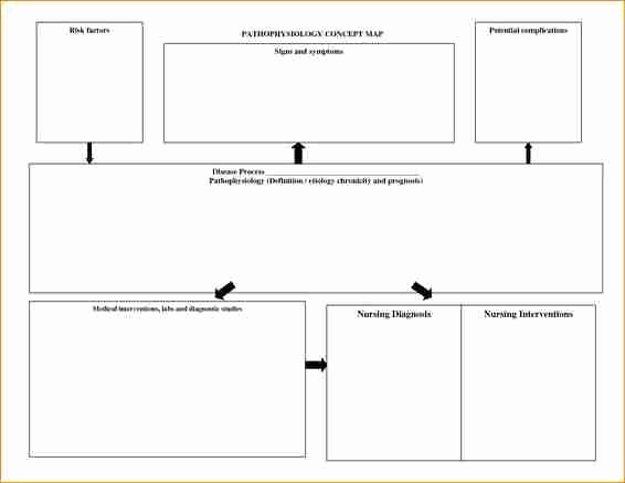 Nursing Concept Mapping Template Awesome 12 Nursing Concept Map Template