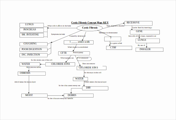 Nursing Concept Mapping Template Awesome Concept Map Template 10 Download Free Documents In Pdf