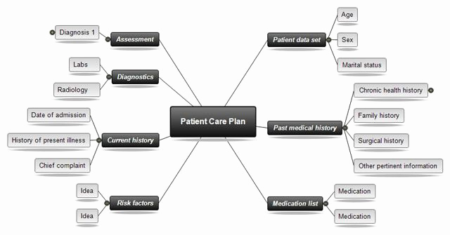 Nursing Concept Mapping Template Luxury Concept Mapping software for Nursing