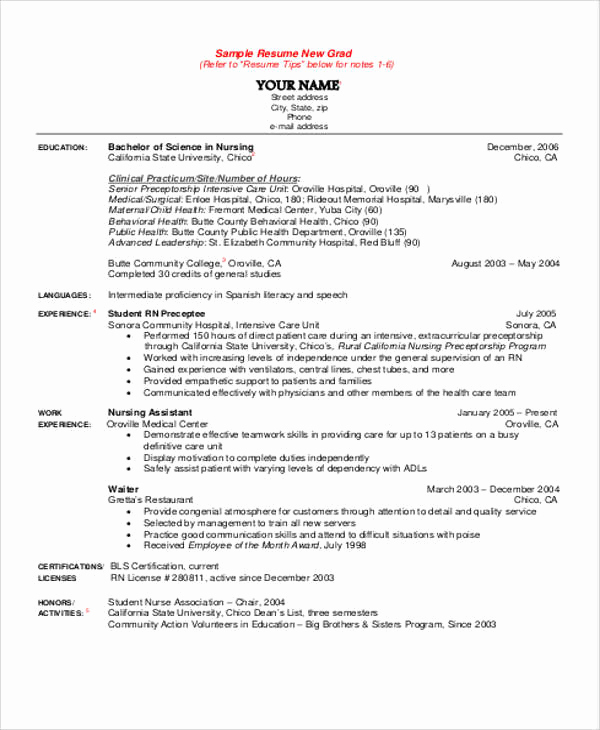Nursing Student Resume Template Luxury 8 Sample Student Nurse Resumes