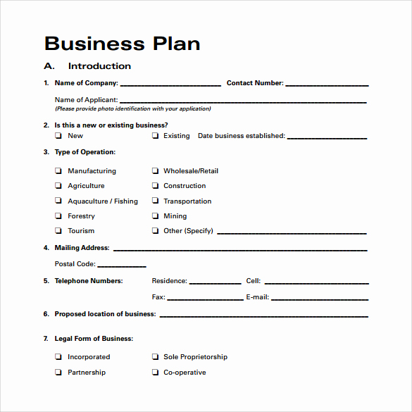 One Page Business Plan Pdf Beautiful Business Plan Sample Pdf