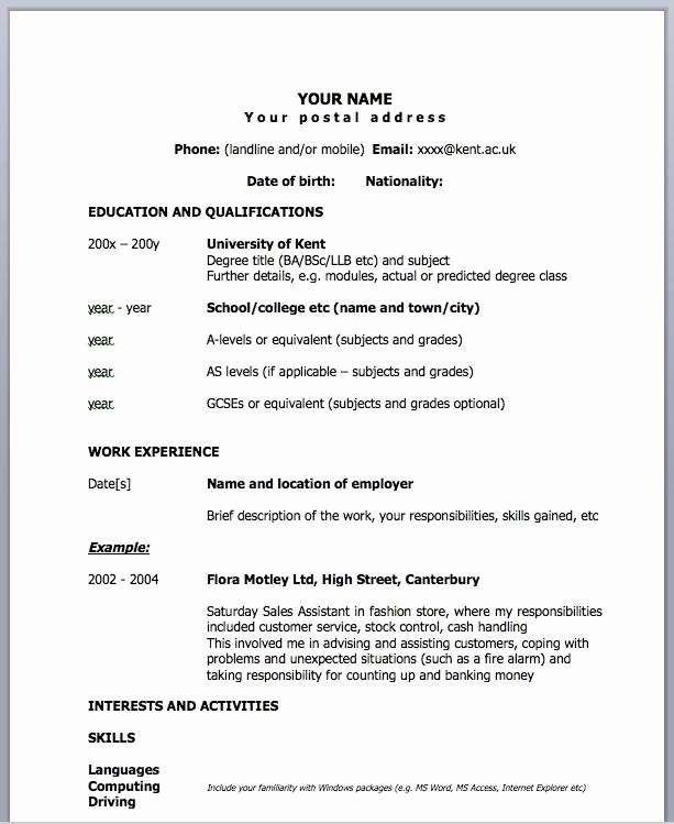 One Page Resume Examples Awesome E Page Resume Template