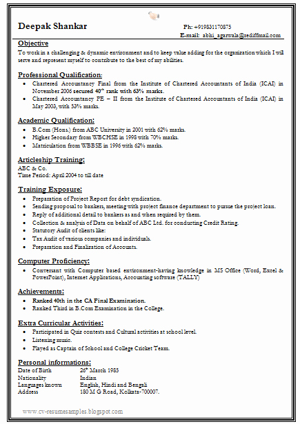 One Page Resume Examples Best Of E Page Resume Template