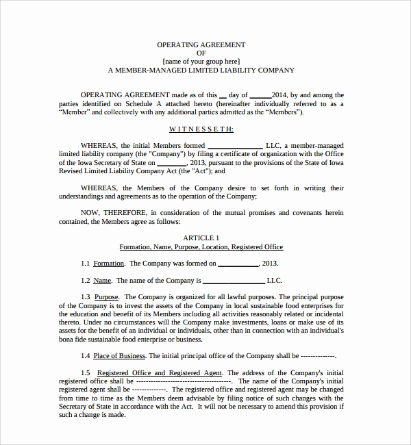 Operating Agreement Template Word Best Of Sample Business Operating Agreement 7 Free Documents