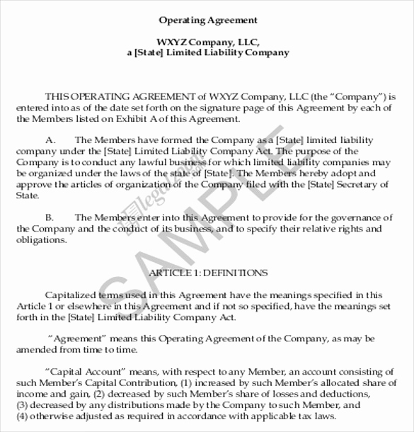 Operating Agreement Template Word Lovely Operating Agreement Template 10 Free Word Pdf Document
