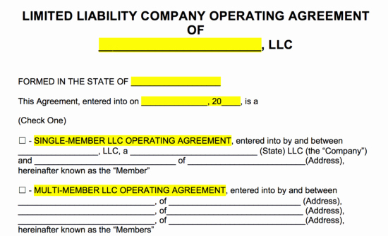 Operating Agreement Template Word Unique Llc Operating Agreement Pdf