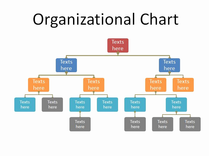 Org Chart Template Word Luxury 40 organizational Chart Templates Word Excel Powerpoint