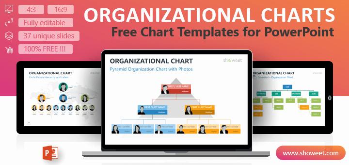 Organizational Chart Template Free Beautiful organizational Charts for Powerpoint