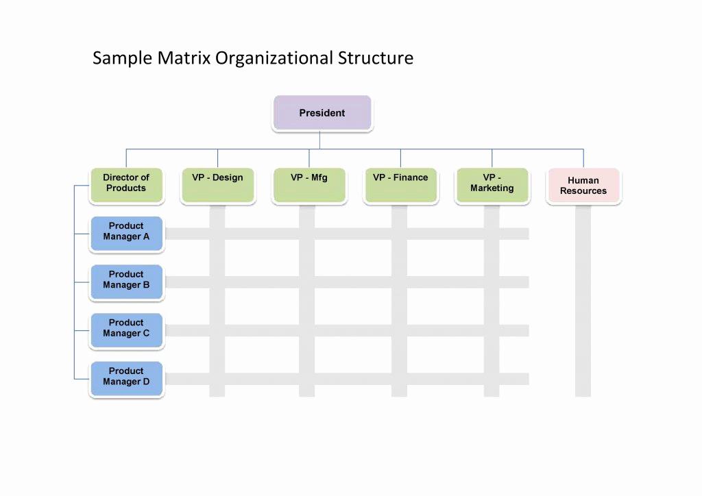 Organizational Chart Template Free Elegant 25 Best Free organizational Chart Template In Word Pdf Excel