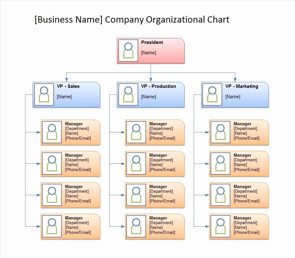 Organizational Chart Template Free Elegant 40 Free organizational Chart Templates Word Excel