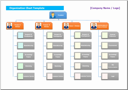 Organizational Chart Template Free Lovely 25 Best Free organizational Chart Template In Word Pdf Excel