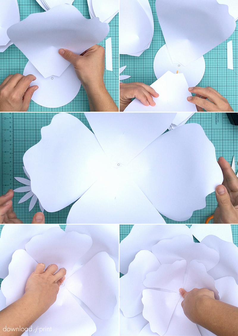 Paper Flower Template Printable Awesome How to Make Giant Paper Roses Plus A Free Petal Template