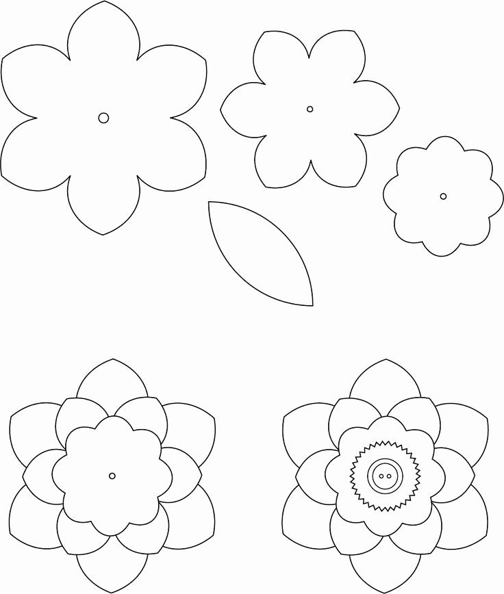 Paper Flower Template Printable Fresh Best 25 Flower Template Ideas On Pinterest