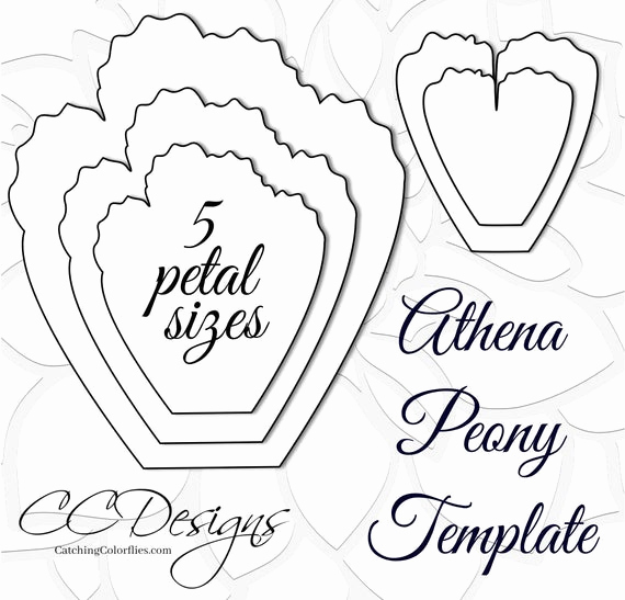 Paper Flower Template Printable Inspirational Giant Paper Peonies Printable Pdf Flower Templates Peony Pdf
