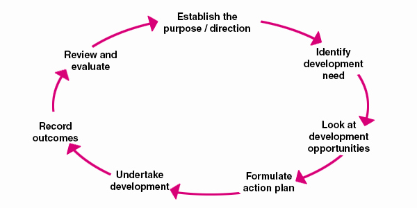 Personal Development Plan Template Beautiful Personal Development Plan Example Template