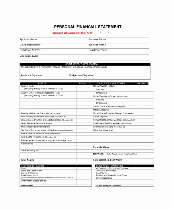 Personal Financial Statement Excel Beautiful Sample Personal Financial Statement 9 Examples In Pdf