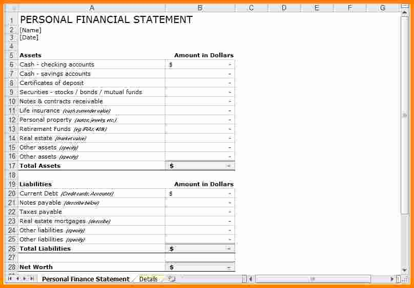 Personal Financial Statement Excel Luxury 10 Financial Statement Template Excel