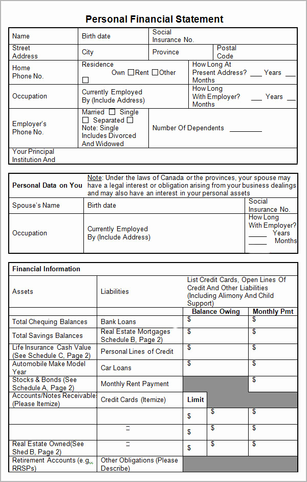 Personal Financial Statement Worksheet Awesome Personal Financial Statement Templates 15 Download Free