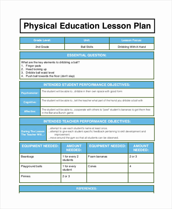 Physical Education Lesson Plan Templates Awesome 62 Examples Of Lesson Plans Word Pdf